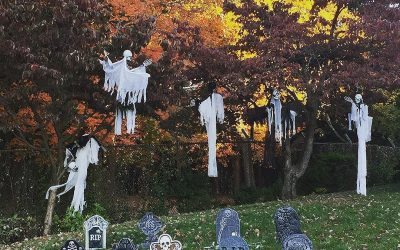 Spooky Halloween   ! On the Willows… #beaconny