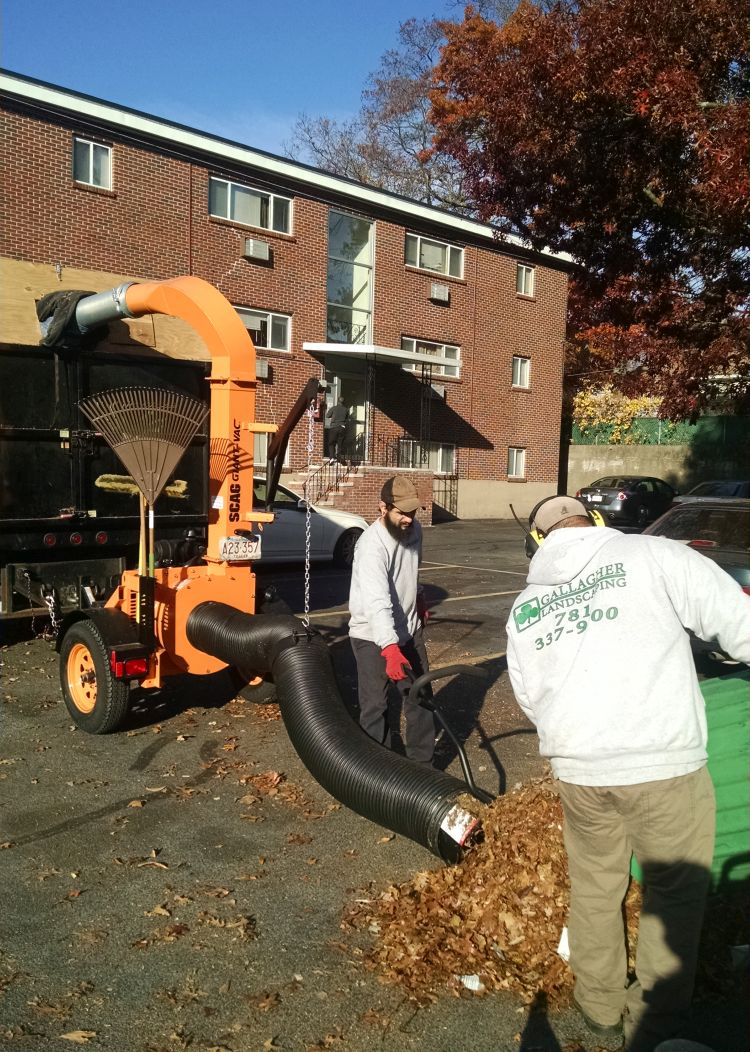 Landscaping Companies Boston Massachusetts Landscaper